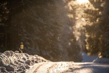 Rootsi ralli 2019 eelvaade